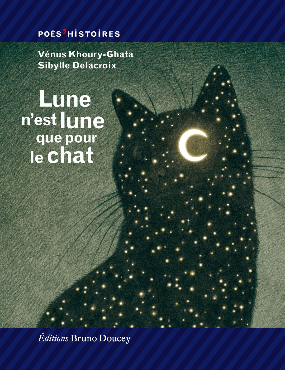 Couverture Lune n'est lune que pour le chat